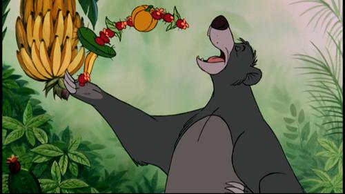 Baloo rencontre