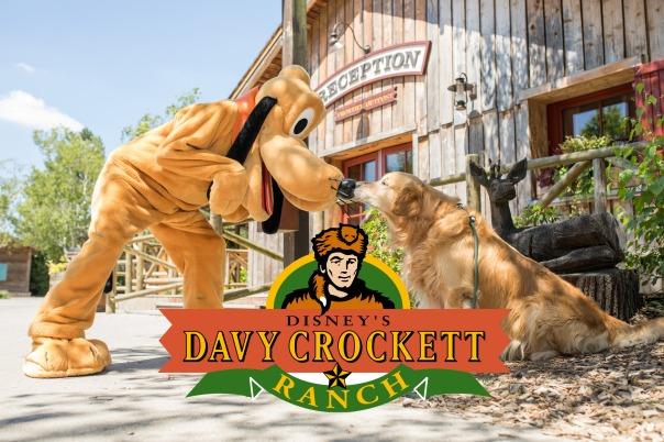 Photo confirmant l'arrivée des chiens au sein de l'hôtel Disney's Davy Crockett Ranch